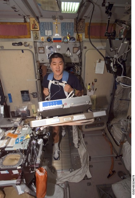 iss016e024679 -- Expedition 16 Flight Engineer Dan Tani