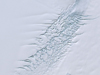Satellite image of the Pine Island Glacier in Antarctica