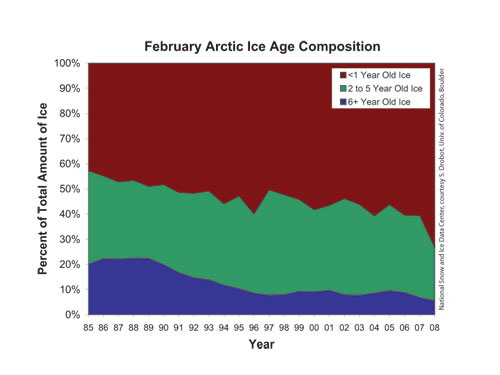 Timeseries of ice age showing the proportional composition of the total ice area covered by ice of different ages.