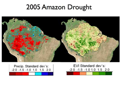 TRMM sensor data depicts the rainfall anomaly that impacted the Amazon basin in 2005.