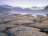 Permafrost on Earth