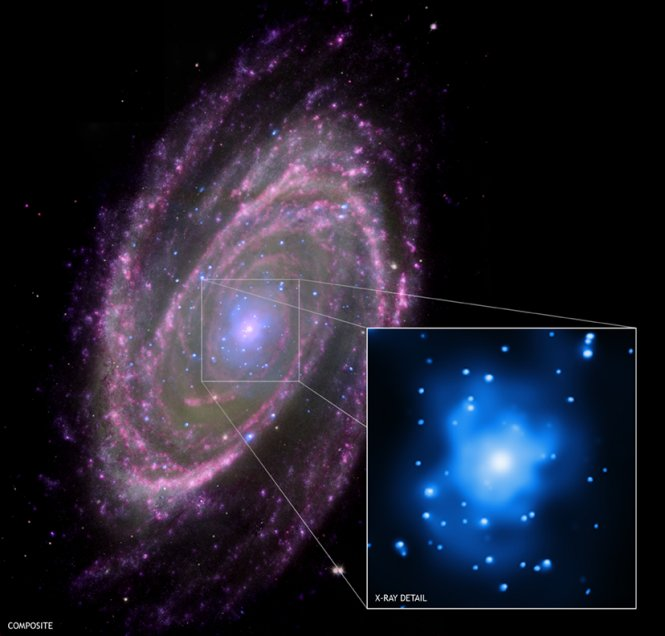 Composite NASA image of the spiral galaxy M81