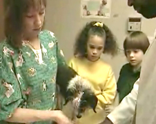Two students look at a dog being held by a veterinarian and a nurse