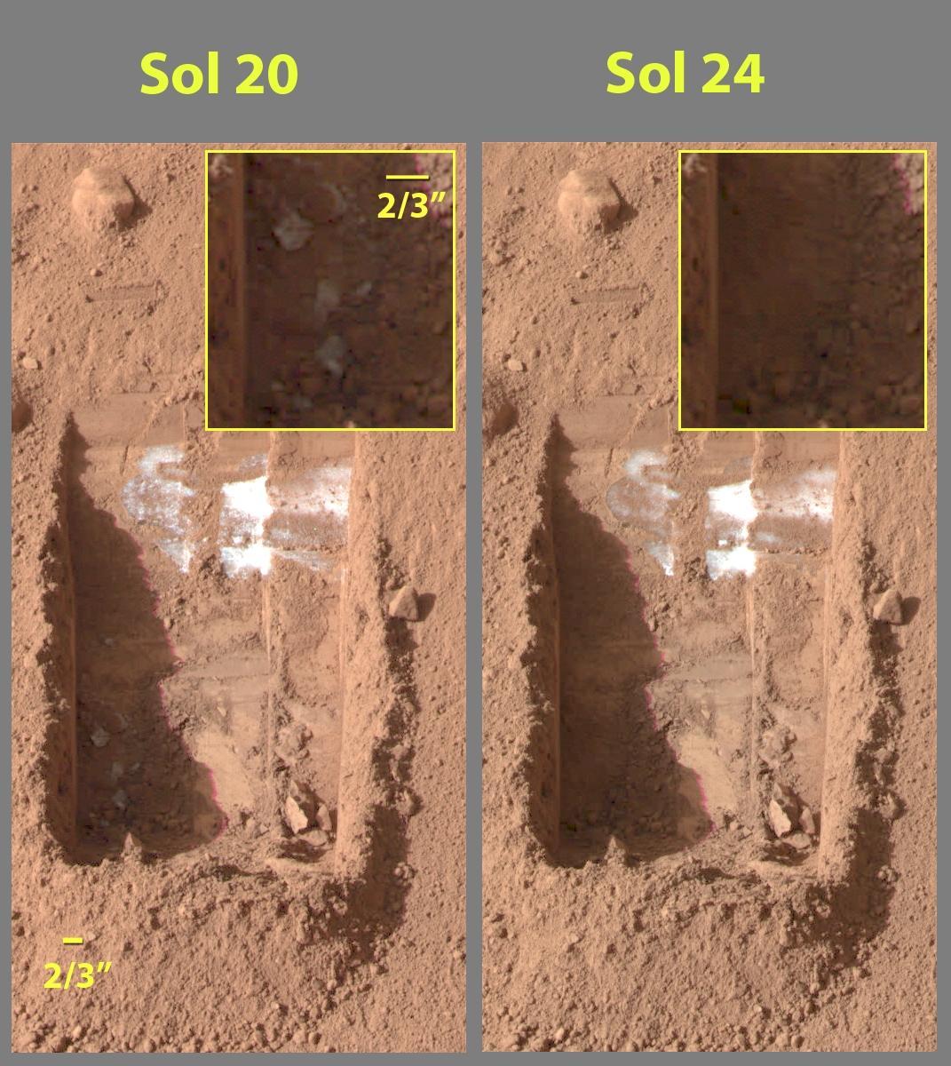 احتمال 99 درصدی وجود حیات در مریخ