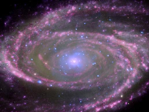 Black Holes Have Simple Feeding Habits