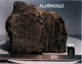 A Mars meteorite (ALH940001) discovered in Antarctica in 1984 being studied by NASA for potential fossil evidence that primitive life may have existed on Mars more than 3.6 billion years ago.
