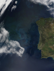 Living ocean - This bluish-green cloud in the Atlantic Ocean off the coast of Portugal is a large phytoplankton bloom observed by the Moderate-resolution Imaging Spectroradiometer (MODIS) aboard the Terra satellite on April 23, 2002. Photo credit-NASA/Jacques Descloitres.