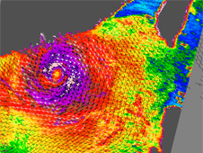 QuickScat image of Typhoon Hagupit's winds