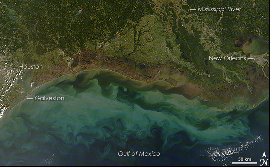 MODIS image showing the impact of Hurricane Ike's powerful surge on coastal wetlands.