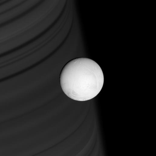 Focus on Enceladus