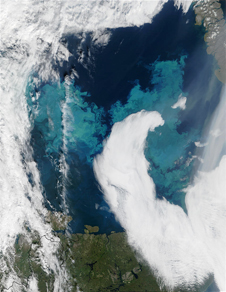 MODIS ocean color shows plankton bloom off Norway