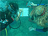 Two girls in scuba gear write on a notepad underwater