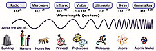 A chart showing the wavelengths of light