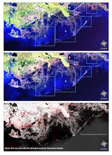 Landsat 5 images of the Louisiana coast taken before and after Hurricane Gustav.