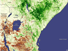 Normalized Difference Vegetation Index map of East Africa
