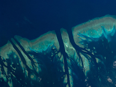 ISS018-E-017507 -- Coral reefs