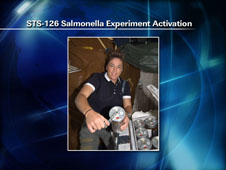 STS-126 Salmonella Experiment Activation