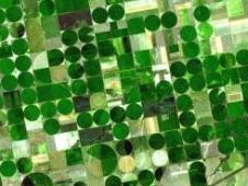 satellite image of Kansas farmland