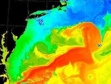 infrared image of the Atlantic Gulf Stream in 2001