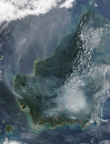 satellite image of fire in Borneo