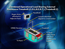 Combined Operational Load Bearing External Resistance Treadmill (C.O.L.B.E.R.T.)