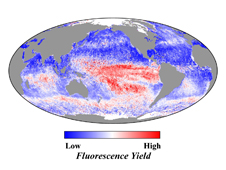 chart showing oceanic fluorescence yield