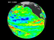 The latest image of sea surface temperatures from NASA's Jason 1 satellite.
