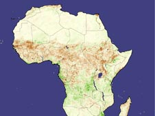 A September 2002 Normalized Difference Vegetation Index (NDVI) image that depicts vegetation density across Africa.