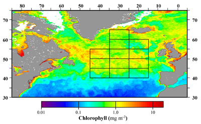 Phytoplankton concentrations visible in data collected by the Sea-viewing Wide Field-of-view Sensor (SeaWiFS)