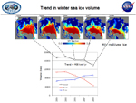 ICESat measurements of winter multi-year ice cover in the Arctic Ocean between 2004 and 2008