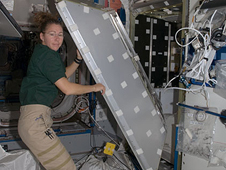 ISS018-E-013808 -- Expedition 18 Flight Engineer Sandy Magnus