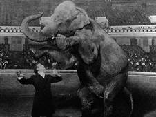 Houdini and Jennie, the disappearing elephant, at the Hippodrome in New York in 1918