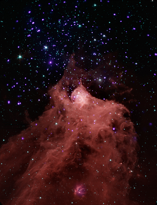 image from NASA's Chandra X-ray Observatory and Spitzer Space Telescope shows the star-forming cloud Cepheus B, located in our Milky Way galaxy about 2,400 light years from Earth
