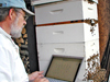 Wayne Esaias, a NASA scientist, records the weight data of one of his beehives