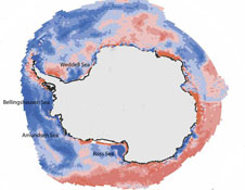 A map of the Southern Ocean's salinity since 1979 shows a marked decrease or freshening, blue, in certain parts of the Ross, Bellingshausen, Amundsen, and Weddell Seas.