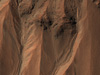 image from NASA's Mars Reconnaissance Orbiter shows gullies near the edge of Hale crater on southern Mars.