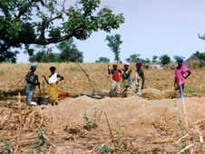 photo of women crushing millet