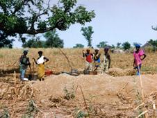 photo of women crushing millet