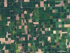 On September 10, 2009, Landsat scanned this image of farmland across northwest Minn., including a view of Noreen Thomas' organic farm on the banks of the Buffalo River near the middle of the image.