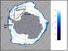 graphic showing the Antarctica continent and its associated sea ice.