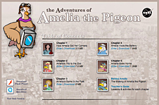 Screenshot of the 'Amelia the Pigeon' Web site