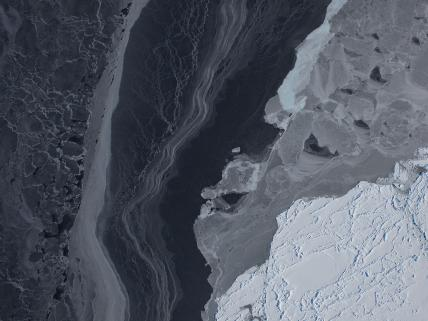 Antarctic Sea Ice