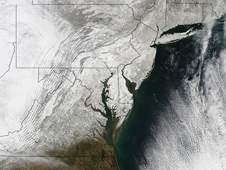 Snow blanketed the East Coast in winter 2010.