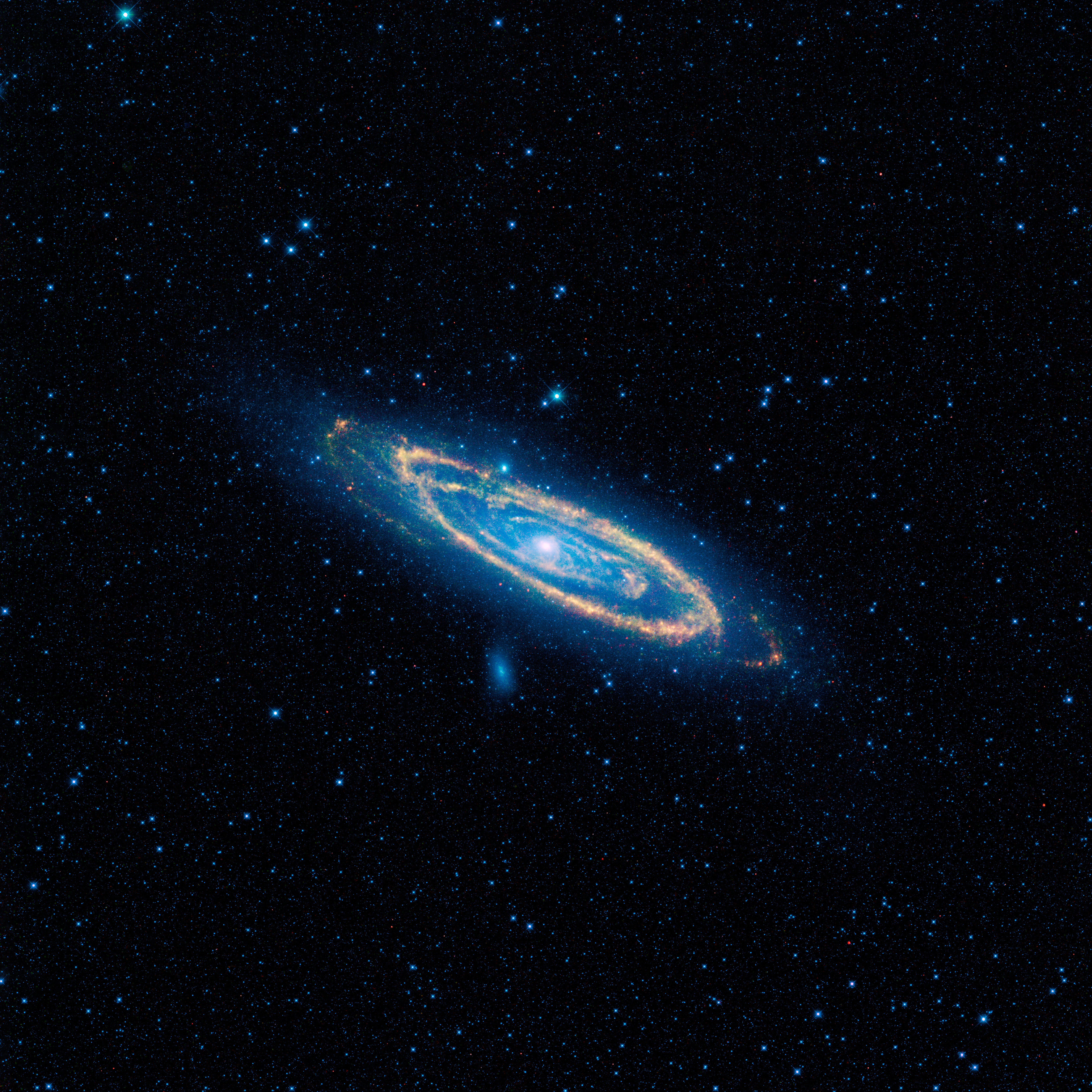 Tonight, find the Andromeda galaxy | Tonight | EarthSky