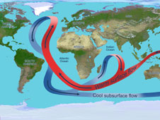 Illustration depicting the overturning circulation of the global ocean.
