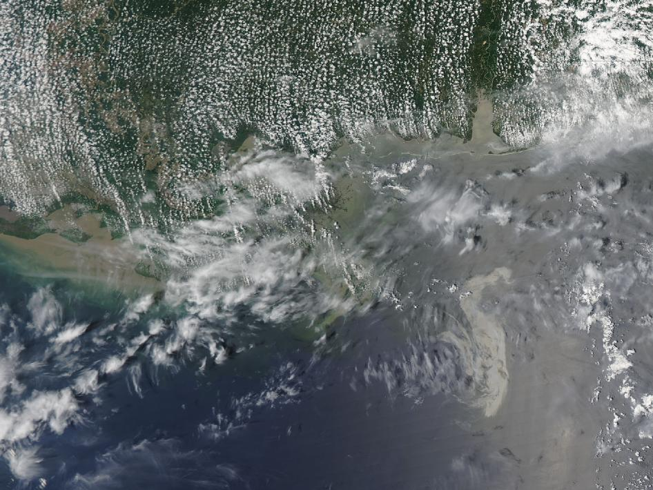 The shape of the oil spill in the Gulf of Mexico continues to change with the movement of the waters and now resembles a swan.