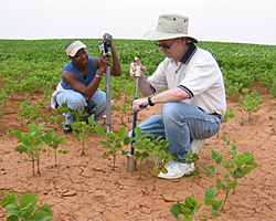 Team members collect soil data in Ala. as part of the ongoing effort to study soil moisture.