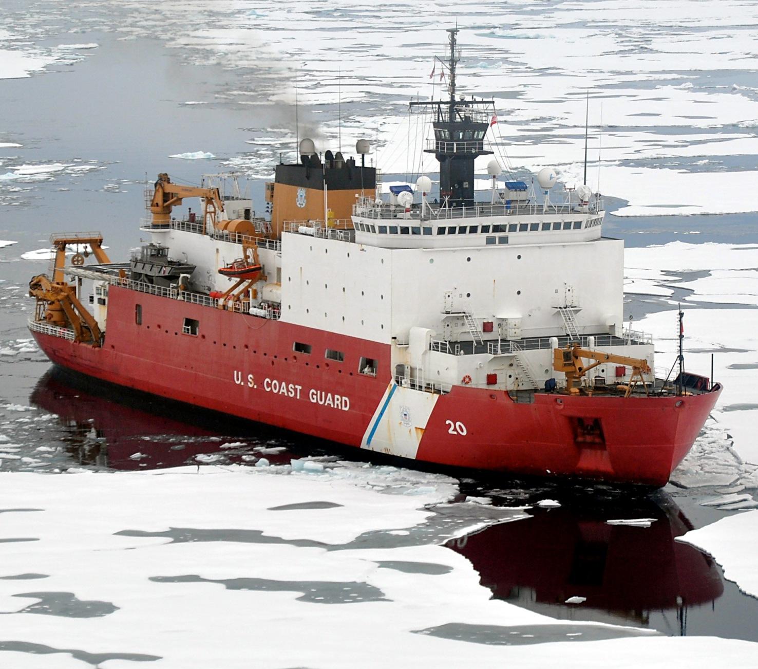 arctica картинки