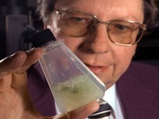 NASA scientist Richard Hoover displays growing moss that remained alive yet dormant while frozen for 40,000 years in the permafrost of the Kolyma Lowlands of northeastern Siberia.