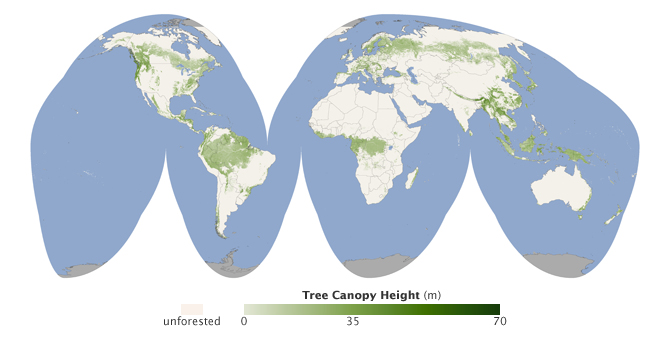 new global tree canopy height map